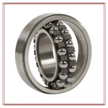 NSK 2302-2RSTN Self Aligning Ball Bearings