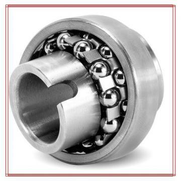 NSK 2303-2RSTN Self Aligning Ball Bearings